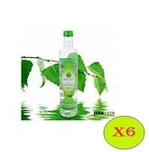 6瓶特惠 DR.OKO德逸 有機樺樹液 500ml/瓶