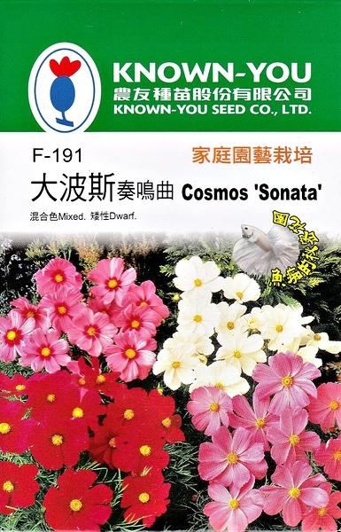 [大波斯菊-奏鳴曲種子] 各式觀賞花卉 香草 蔬菜水果種子. 單買種子。郵局運費40元起