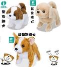 *幼之圓*日本IWAYA 甜甜屋-電動聖伯納/黃金獵犬/威爾斯獵犬~可愛電子小寵物