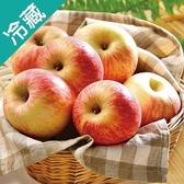 美國華盛頓富士蘋果138 /6粒(130g±5%/粒)【愛買冷藏】