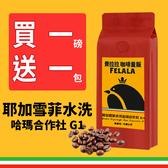 費拉拉 耶加雪菲水洗 哈瑪合作社 G1  一磅 限時下殺↘ 加碼買一磅送一掛耳 手沖咖啡 防彈咖啡