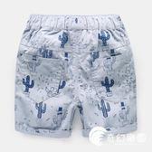 男童短褲子沙灘夏裝新款童裝寶寶兒童中褲小童-奇幻樂園