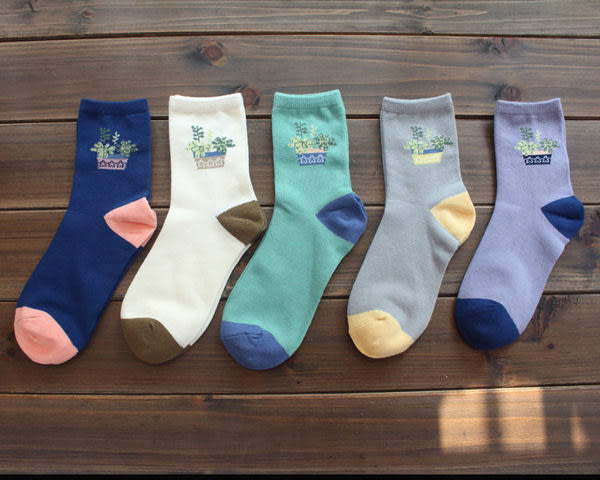 襪子【FSW033】韓系小清新盆栽中筒襪 SORT