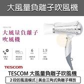 【南紡購物中心】TESCOM 雙配件強力速乾負離子吹風機 TID961TW