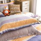 鴻宇 天絲枕套2入 天絲300織 60支 歐式壓框枕套 換日線 台灣製2056