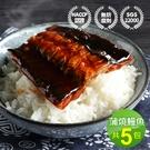 【屏聚美食】外銷日本鮮嫩蒲燒鰻魚5包(150g/包±10%)