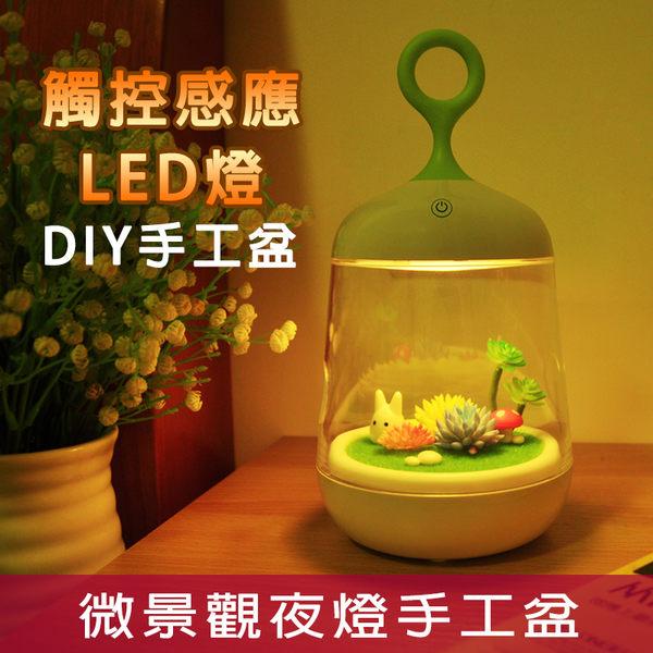 微景觀植物夜燈LED燈床頭燈手提燈小鳥燈景觀多肉盆可當盆栽豆豆龍小龍貓可蓄電