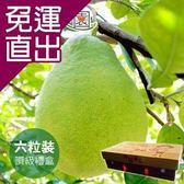沁甜果園SSN 頂級文旦6粒裝/5台斤禮盒 E00900090【免運直出】