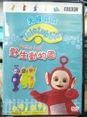 挖寶二手片-B53-正版DVD-動畫【天線寶寶: 野生動物園】-國英語發音(直購價) 海報是影印