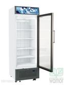 德國LIEBHERR 直立單門冷凍櫃307L (FDV4613)
