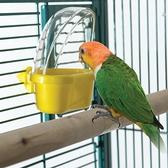 餵鳥器 Caitec鸚鵡食盒防灑防撒防濺鳥食杯飼料盒喂食器鳥籠用