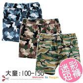大童男迷彩褲短褲 褲子100 150