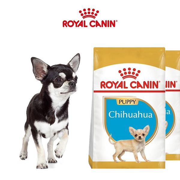 法國皇家 CHP吉娃娃幼犬專用飼料(原PRCJ30)-1.5kg