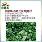 【綠藝家】M09.幸運草(白花三葉草)種...