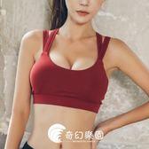運動文胸-高度防震雙肩帶健身文胸跑步運動內衣聚攏瑜伽-奇幻樂園