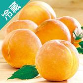 日本和哥山水蜜桃禮盒(5入)【愛買冷藏】