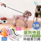 寵物牽繩(L號/5米) 自動牽引繩 遛狗...