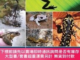 二手書博民逛書店Amphibian罕見Survey And Monitoring HandbookY255174 John W