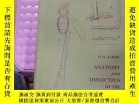 二手書博民逛書店ANATOMY罕見AND DISSECTION OF THE HONEYBEE 館藏Y9837 H,A,DAD