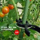 黃瓜西紅柿固定夾子園藝支架茄子辣椒固定夾支撐夾子桿徑固定防護 星河光年DF