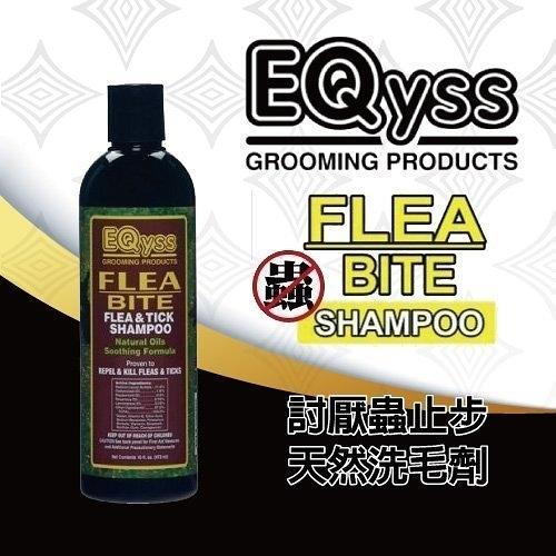 *KING WANG*【含運】美國EQyss-Flea Bite shampoo討厭蟲止步!洗毛精 -16oz