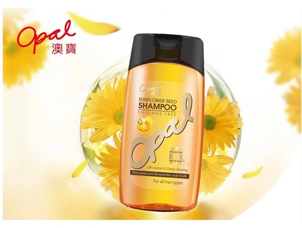 Opal澳寶無矽靈葵花籽淨透控油洗髮精-3瓶/組(加送果香焗油15ML*2包)