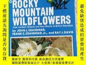 二手書博民逛書店A罕見FIELD GUIDE TO ROCKY MOUNTAIN WILDFLOWERSY10980