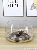 烏龜缸魚缸玻璃圓形辦公桌綠蘿水培家用小魚創意透明小型迷你桌面烏龜缸 艾家 LX