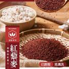免浸泡紅藜麥 220g/包 藜麥 超級食物 食用米