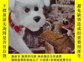 二手書博民逛書店Lost罕見DogY352948 penelope lively