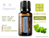 薄荷精油Peppermint 15ml  doTERRA 美商多特瑞精油 (免運)