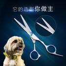 電推剪寵物美容剪刀 狗狗剪毛牙剪泰迪比熊修毛工具套裝剪子彎剪理發