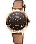 ORIENT 東方 晶鑽機械腕錶-咖啡x玫瑰金/36mm FER2H002T