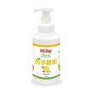 (防疫商品)Nuby 洗手慕斯-檸檬海鹽340ml[衛立兒生活館]