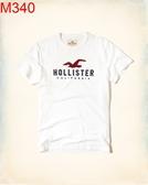 HCO Hollister Co 男當季  短袖T 恤Hco M340