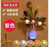 臥室小夜燈led光控節能寶寶床頭燈tz2437【歐爸生活館】