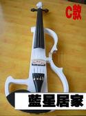 合併下單專屬賣場(電子小提琴+琴盒+休閒皮鞋*2)【藍星居家】