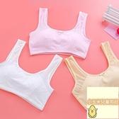 2件裝 國小生內衣女童小背心學生女孩純棉學生文胸發育期