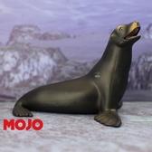 【Mojo Fun 動物星球頻道 獨家授權】 海獅 387115