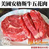 【海肉管家】家庭號大份美國安格斯牛五花肉X1包(500g±10%/包)