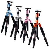 24期零利率 Fotopro Fotopro TX-Mini 微單專用腳架 (共4色/公司貨)
