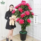 仿真植物盆栽擺件塑料裝飾客廳擺件牡丹花大型綠植盆景落地花假花 依凡卡時尚