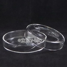 玻璃培養皿10cm  細菌培養皿 玻璃皿 玻璃罩 實驗器材