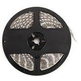 英國 Karrimor 防潑水USB條燈 室內用 5M 白光 專業戶外