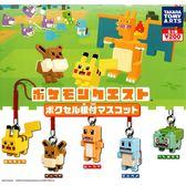 全套5款【日本正版】精靈寶可夢 吊飾 扭蛋 轉蛋 神奇寶貝 寶酷方 寶可夢探險尋寶 TAKARA TOMY - 868511