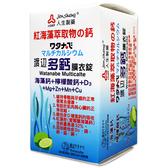 人生製藥 渡邊多鈣膜衣錠 60錠/盒 公司貨中文標 PG美妝