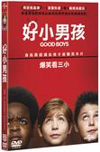好小男孩 (DVD) Good Boys (2019) (DVD)