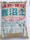 日本 硬質鹿沼土 適合多肉植物 土壤改良 酸性植物 高級園藝用土 大包裝 - 細粒