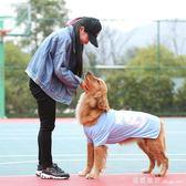 狗狗衣服泰迪金毛夏薩摩耶薄款中型大型犬寵物春季春t恤 全網最低價最後兩天