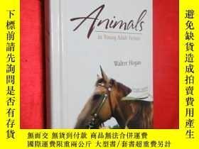 二手書博民逛書店Animals罕見in Young Adult Fiction